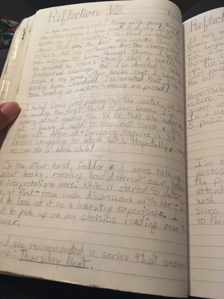 Reflections in my reading journal